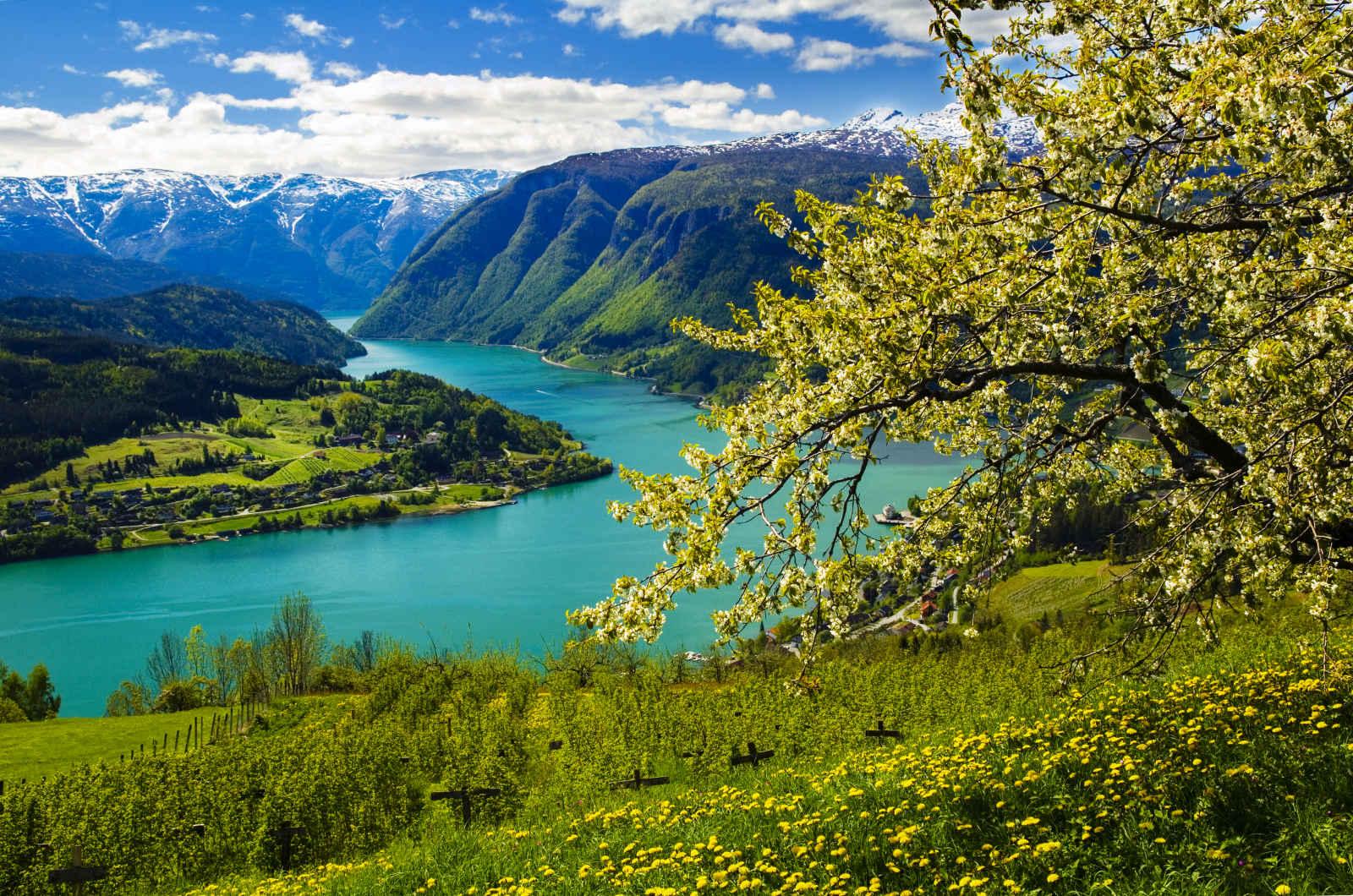De fjords en fjords - voyage  - sejour