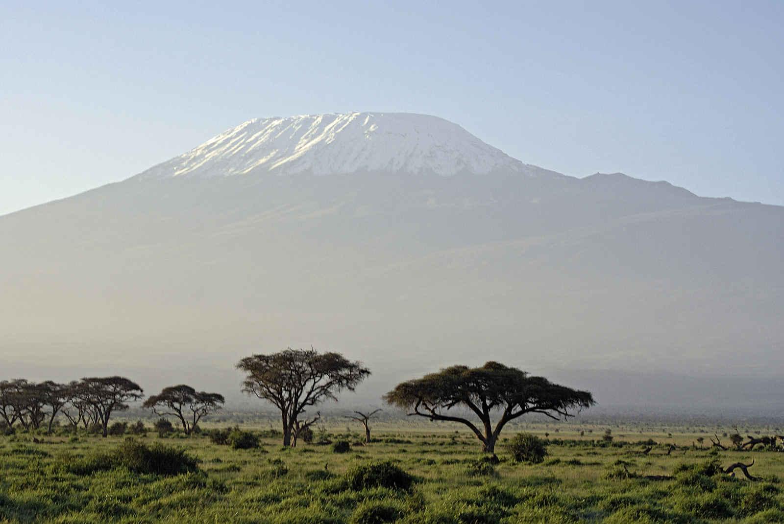 Souvenirs du Kilimandjaro