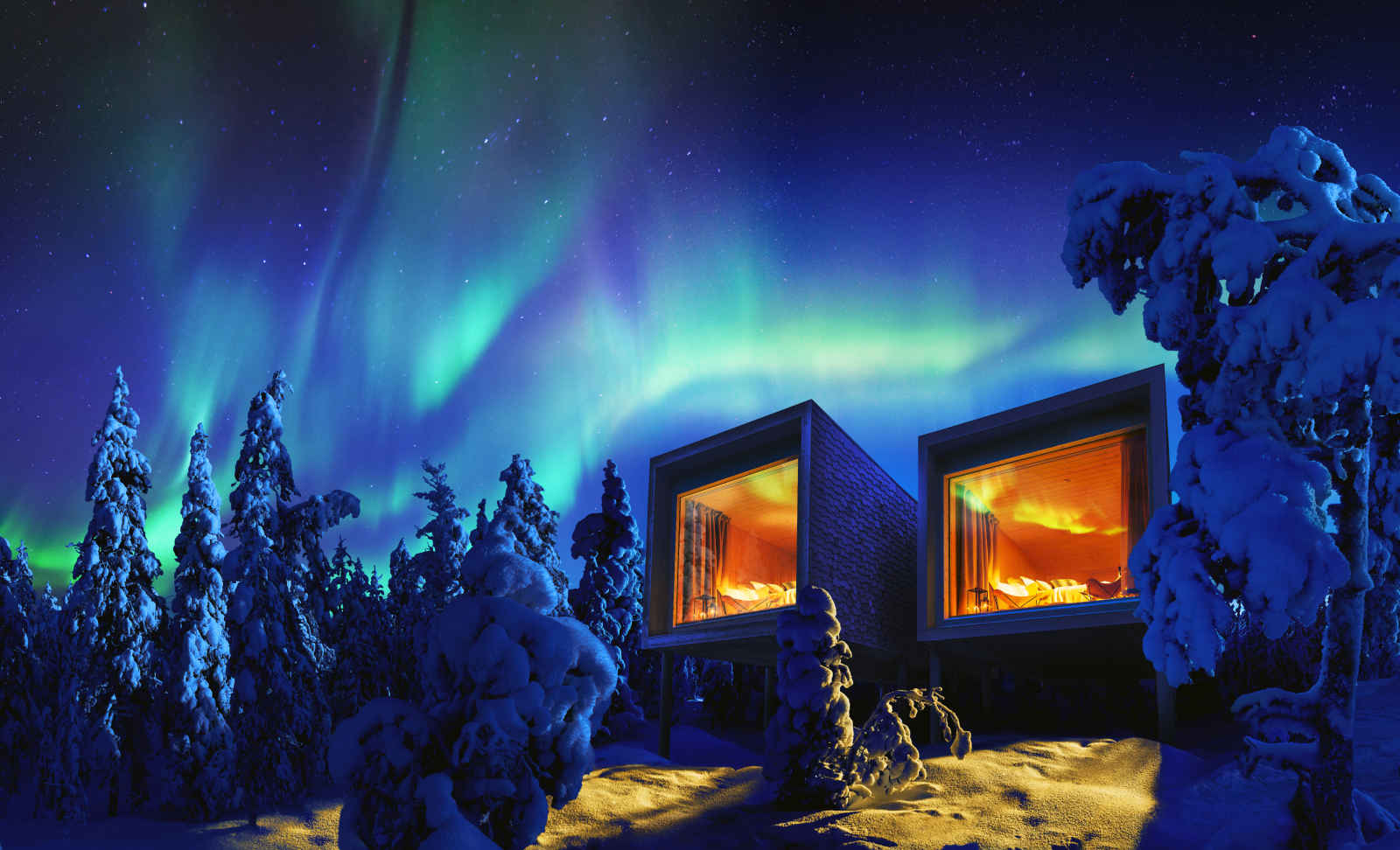 Arctic Treehouse - 5 jours / 4 nuits