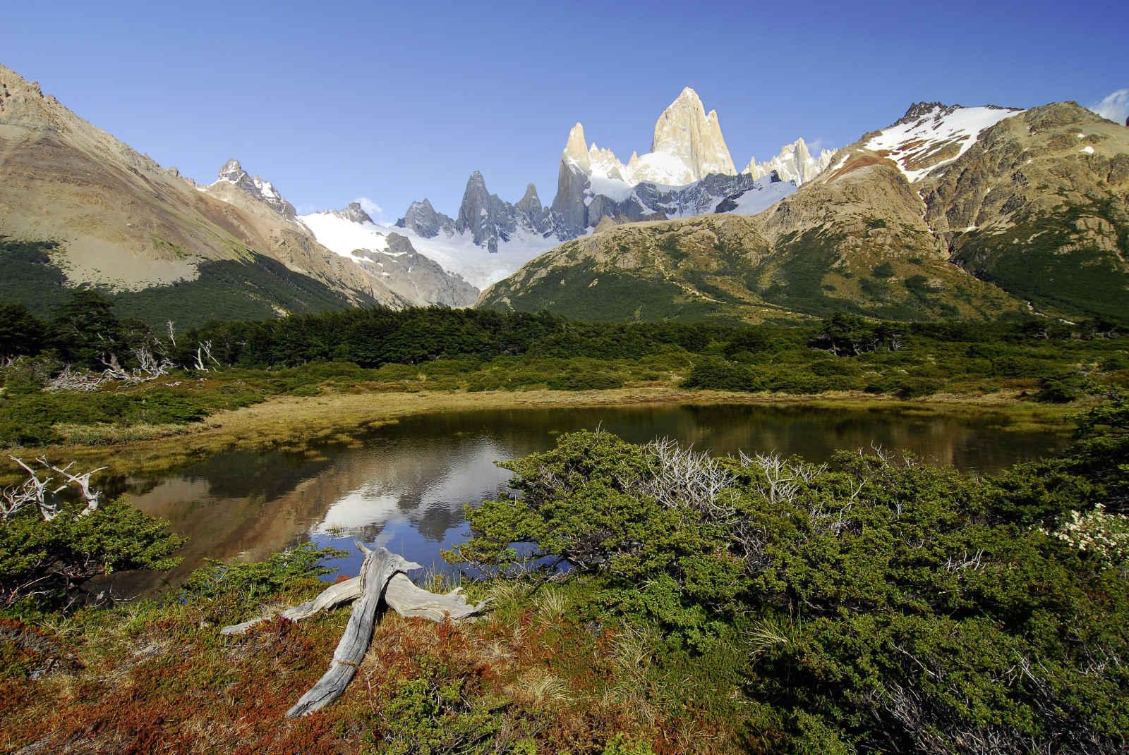 Argentine express