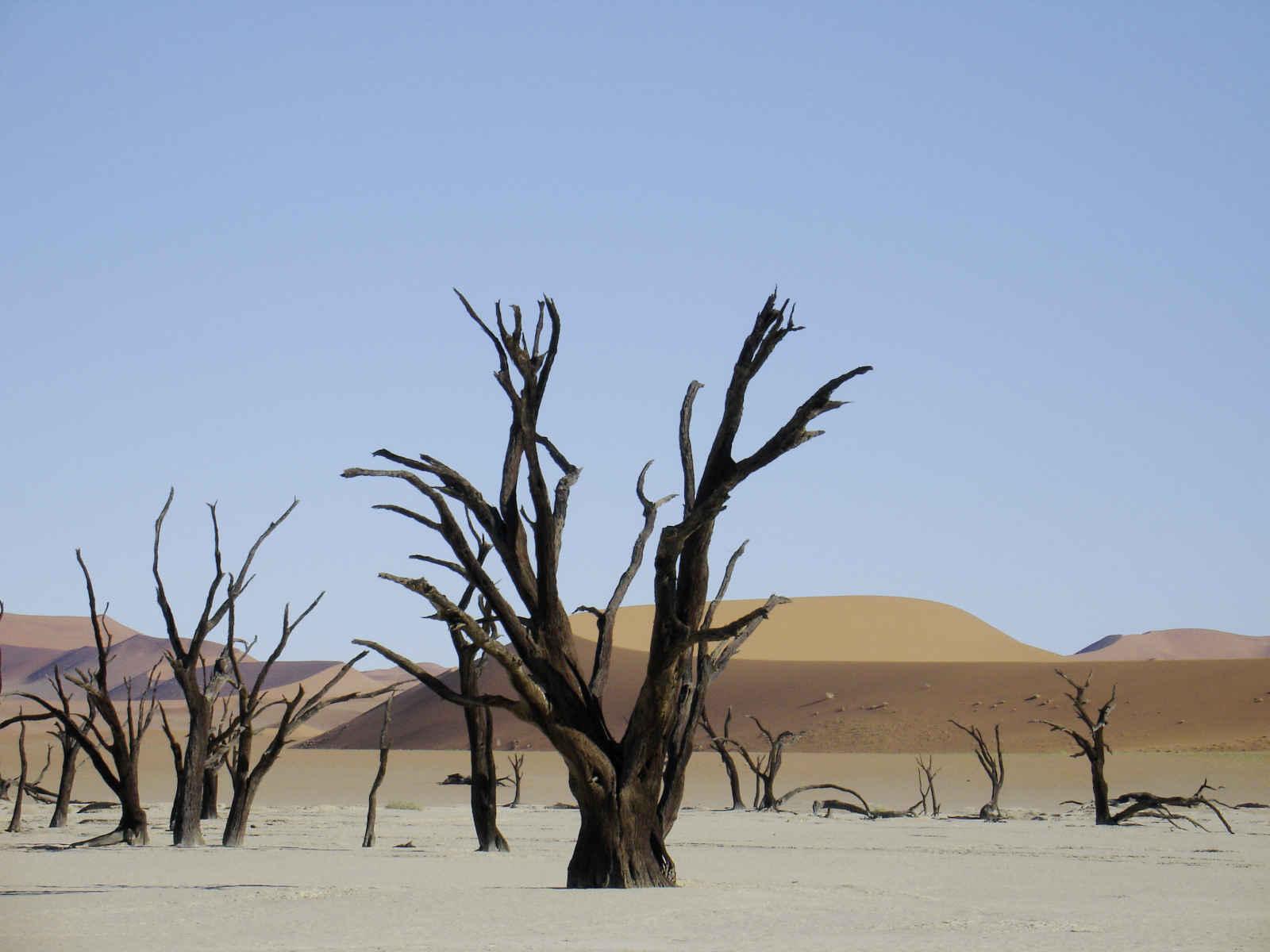 Namibie infinie