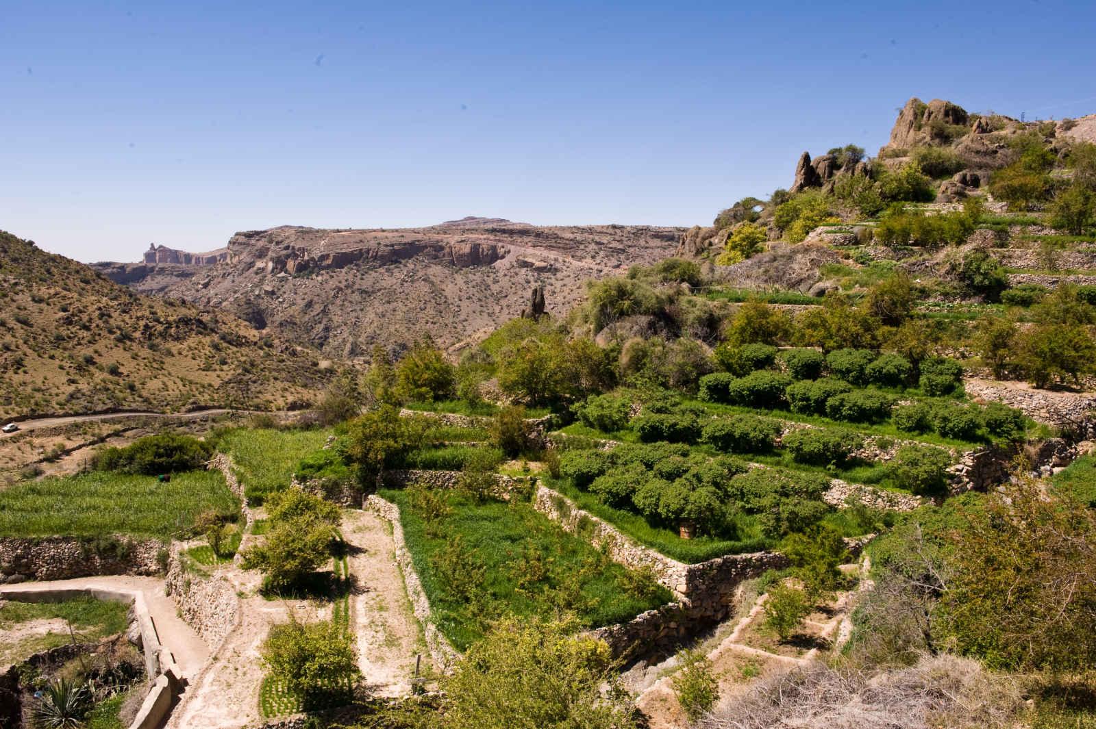 Oman - Circuit L'Aventure en 4x4